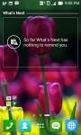 Tulip Wallpapers HD screenshot 5/6