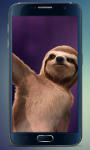 Dance of Sloth Live Wallpaper screenshot 1/3