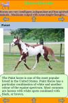 The Horse Breeds screenshot 3/3