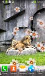 Lion Live Wallpapers Best screenshot 6/6