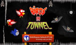Birds In Tunnel - Flapping screenshot 1/6