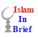 Islam In Brief screenshot 1/1