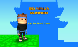 3D Ninja Runner screenshot 1/4