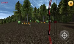 Bow Shoot 3D screenshot 4/6