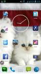 Cat Kitten Pictures screenshot 3/6