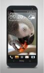 Parrot like Mandarin LiveWP screenshot 3/3