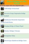 Scary Bridges In The World screenshot 2/3