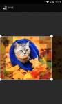 Backgrounds HD 7Fon screenshot 4/4