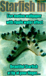 Starfish in Sea Live Wallpaper free screenshot 1/3
