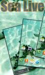 Starfish in Sea Live Wallpaper free screenshot 2/3