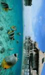 Marine Fish HD Wallpaper For Android Phones screenshot 2/6