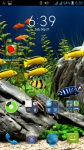 Saltwater Fishing HD Wallpaper screenshot 4/4