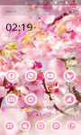 Sakura Theme - Cherry Flower screenshot 4/6