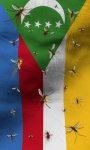 Comoros flag lwp Free screenshot 2/5