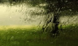 Water On Glass Live Wallpaper screenshot 2/3