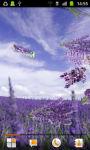 Lavender Flower Summer Wallpaper HD screenshot 2/3