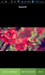 Flower New Wallpaper screenshot 3/3