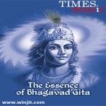 The Essence of Bhagavad Gita Lite screenshot 1/2