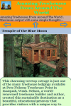 Amazing Treehouses From Around The World screenshot 3/3