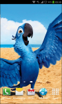 Angry Birds Rio Wallpapers screenshot 4/6