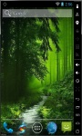 Secret Green Forest Live Wallpaper screenshot 2/2