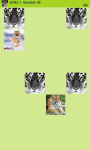 Tigers Memory Game screenshot 6/6
