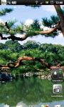 Japanese Zen Garden LWP screenshot 4/6