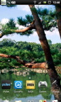 Japanese Zen Garden LWP screenshot 5/6