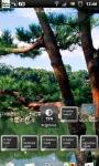 Japanese Zen Garden LWP screenshot 6/6