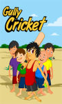 Gully Cricket NIAP screenshot 1/3