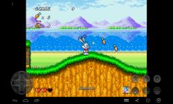 Adventure  of Buster Bunny screenshot 4/4