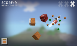 Ninja Craft Free screenshot 2/4
