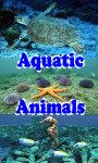 Aquatic Animals screenshot 1/4