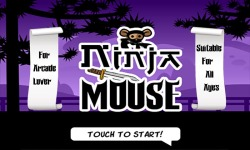 Ninja Jerry - Mouse Lost in Cat Wonderland screenshot 1/6
