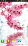 Blossoming Flower over Water Ripple LWP screenshot 3/3