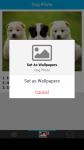 Dog Photo screenshot 4/6