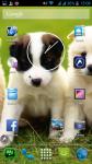 Dog Photo screenshot 6/6