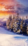Beautiful Pictures of Sunset Snow Mountain screenshot 6/6