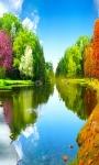 Stunning images of green forest wallpaper screenshot 5/6