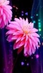 Beautiful Pink Flower LWP screenshot 3/3