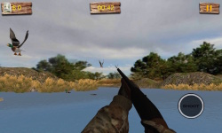 Duck Hunting 3D screenshot 5/6