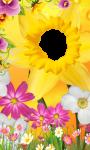 3D Flower photo frames screenshot 1/4