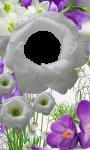 3D Flower photo frames screenshot 2/4