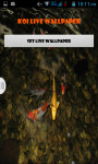 Koi Fish Pond Live Wallpaper Best screenshot 1/4
