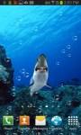 Shark Tank In Your Phone LWP free screenshot 3/3