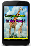 Largest Zoos in the World screenshot 1/3