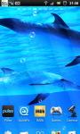 Underwater Swimming Dolphin Live Wallpaper screenshot 4/6
