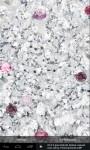 Pink Diamonds LWP screenshot 4/4