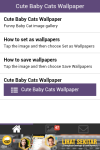 Free Cute Baby Cat Wallpaper screenshot 6/6