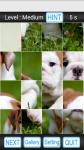 Puzzle Game Lite screenshot 3/3